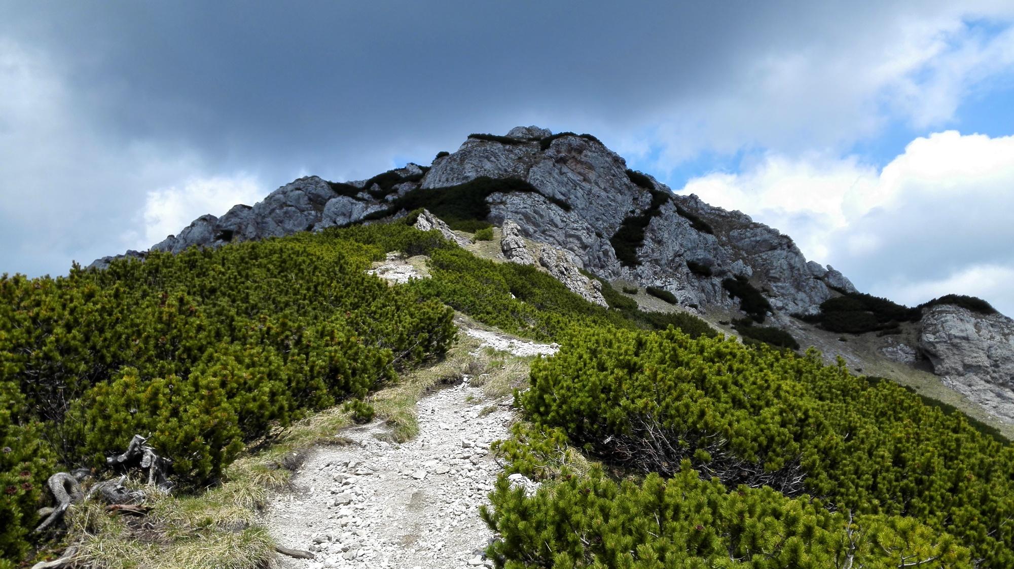59cec2a49af Trasa: Sivý vrch z Bobroveckej doliny - Turistika na Liptove ...